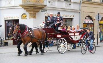 <B>MODALIDAD 4</B>, 300.000€ RC + CARRO DE CABALLO